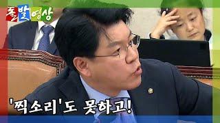 [돌발영상] '찍소리' / YTN