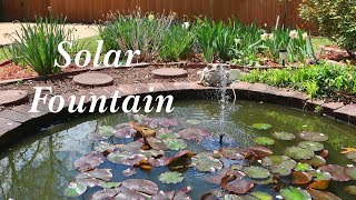 Solar Pond Fountain🌞CONXWAN Battery Back-up Water Feature, Pond, Bird Bath👈
