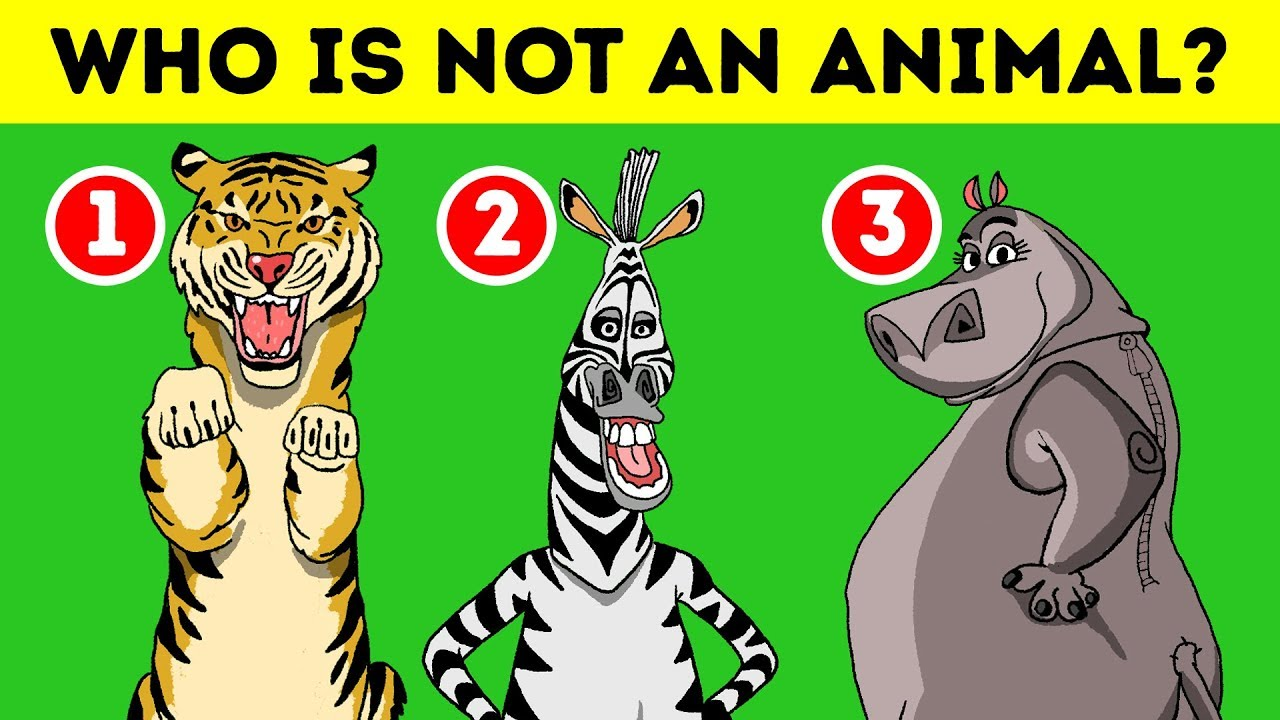 14 quick riddles to start your brain in the morning youtube