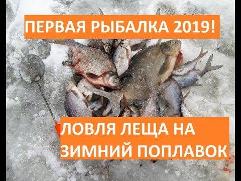 Первая рыбалка 2019! Ловля леща на зимний поплавок! Лещи не лезут в лунку!