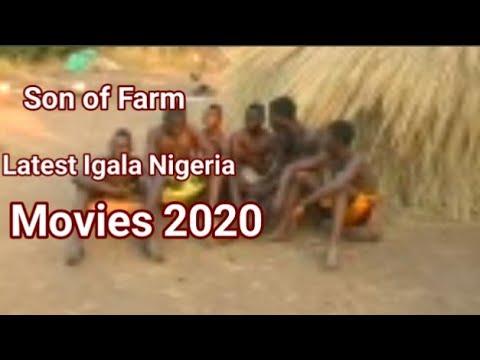 Download OMOKO(SON OF FARM SEASON 1) LATEST IGALA MOVIES 2020