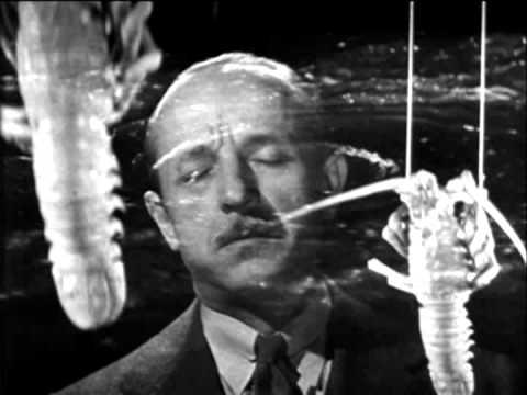 Inspector Fernack's Shellfish Poisoning Nightmare
