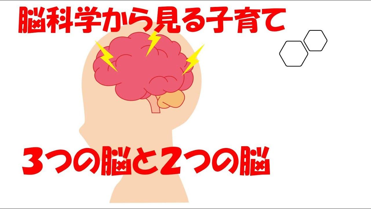 open seminer「3つの脳と2つの脳」