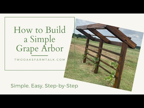 Expert How-to; Build a Beautiful & Simple Grape Arbor 1
