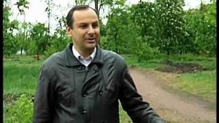Реконструкція парку в Новомиргороді