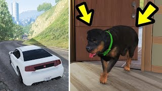 GTA 5 - I didn't know Chop did this when he's alone