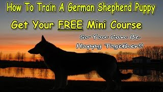 ▶▶▶Potty Training A German Shepherd Puppy [ FREE COURSE ] Get FAST Results! ◀◀◀