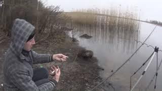 Рыбалка на фидер Ловля леща в марте