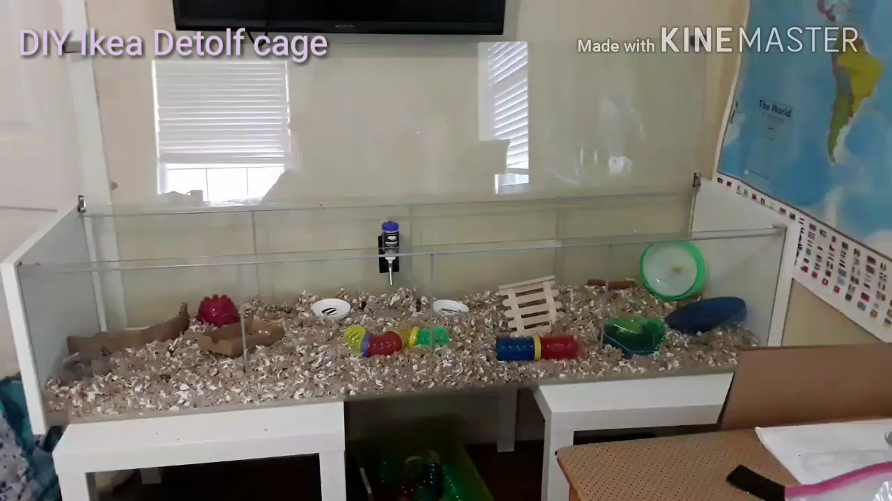 Ikea detolf diy hamster cage tour july 2017 youtube for Ikea hamster cage
