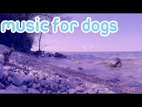NEW 15 Hours of Calming Music to Relax Your Anxious Dog! 2018