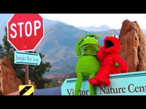 Kermit the frog gets a new job greeting people at colorado state park m4hsunfo