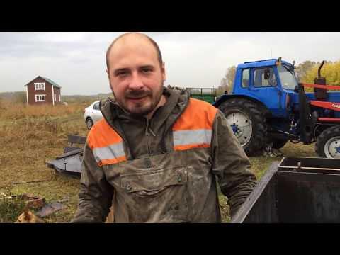 Жизнь на ферме #88: Осеменение и коммуникации