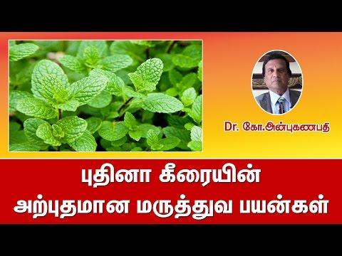 புதினா கீரையின் அற்புதமான மருத்துவ பயன்கள் | Mint medicinal uses in tamil