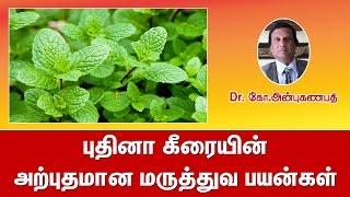 புதினா கீரையின் அற்புதமான மருத்துவ பயன்கள்   Mint medicinal uses in tamil