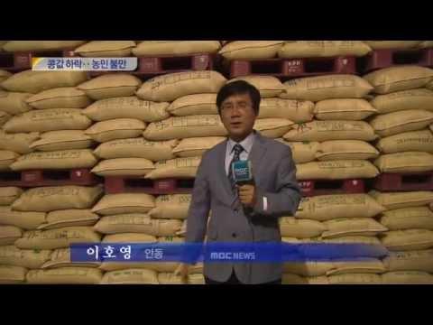 [대구MBC뉴스] 국산콩 재고 쌓이고 가격하락