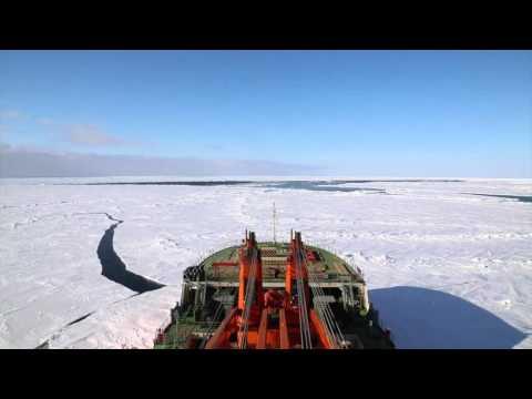 Arctic Expedition 2015 to Severnaya Zemlya Archipelago. Russia.