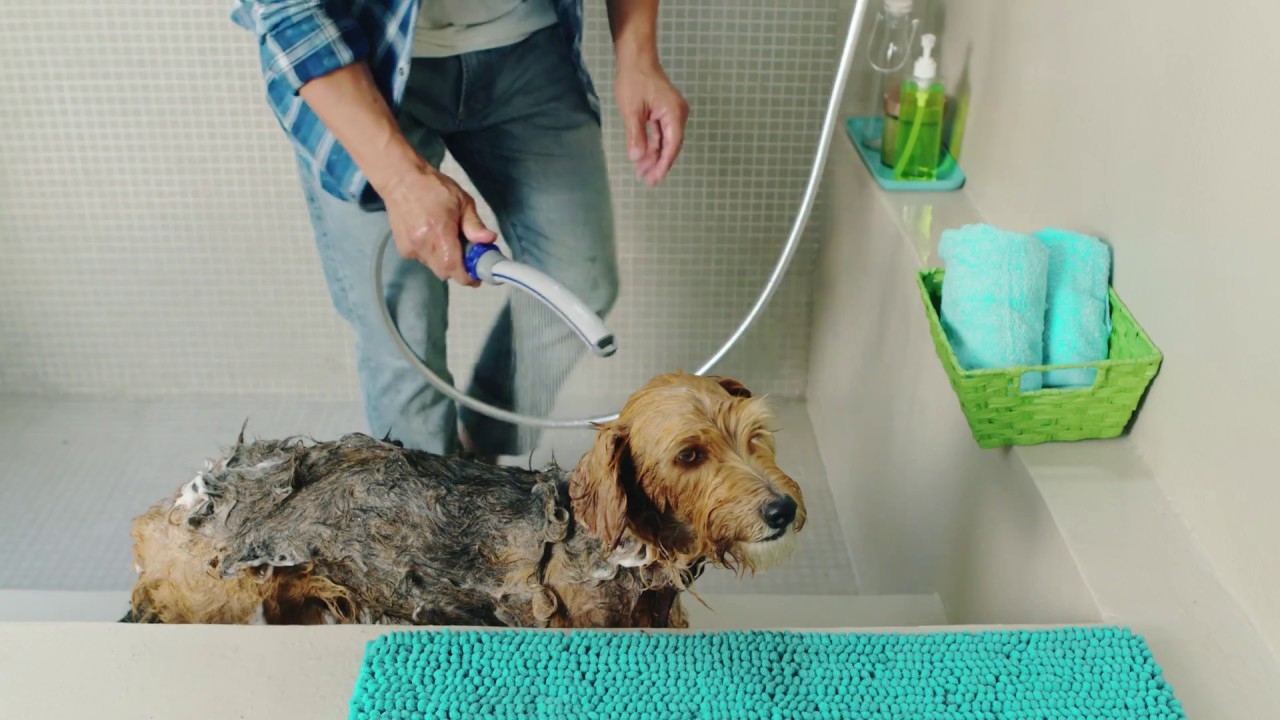 brush swellgoods image spray product products bath dog shower