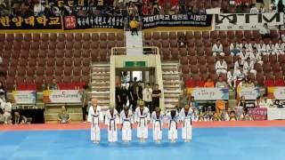 2017세계태권도한마당대회-K타이거즈시범단A팀(탑클래스영어태권도장). 주니어1-3위