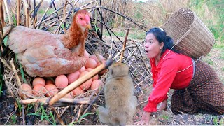 women and monkey cat chicken egg for cook- fry egg & chicken for dog- cooking in forest HD