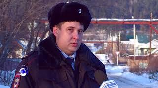 Жителям  ул. Пушкина мешает лай собак новых соседей
