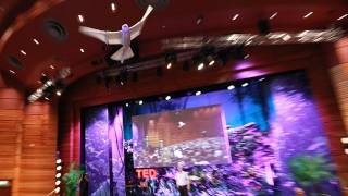A robot that flies like a bird | Markus Fischer thumbnail