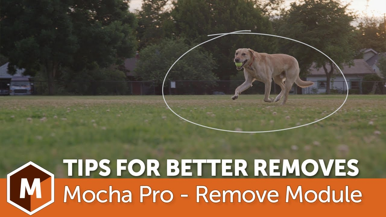 Download Mocha Pro: Tips for Faster, Better Object Removals