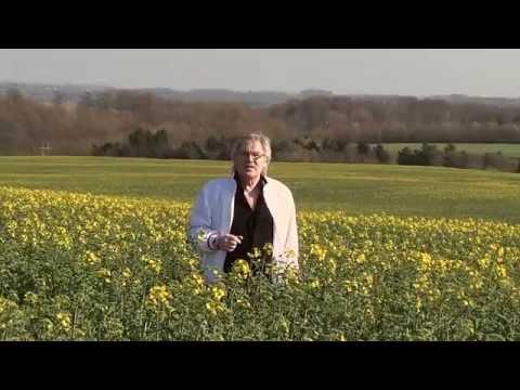 Richard Ragnvald - Vi Har Alle Brug For Kærlighed