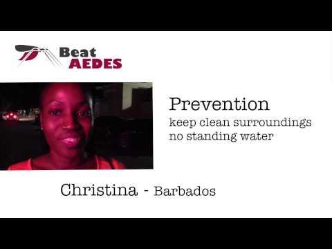 Beat Aedes Testimonials #s 1 & 2 - Christina & Thomas