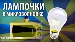 Микроволновка и лампочки - физические опыты