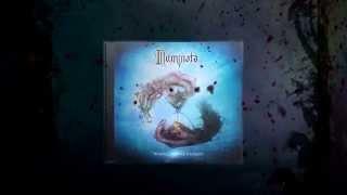 Illuminata - Where Stories Unfold -...