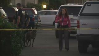 Oregon shooting: Suspect Chris Harper-Mercer 'British born'