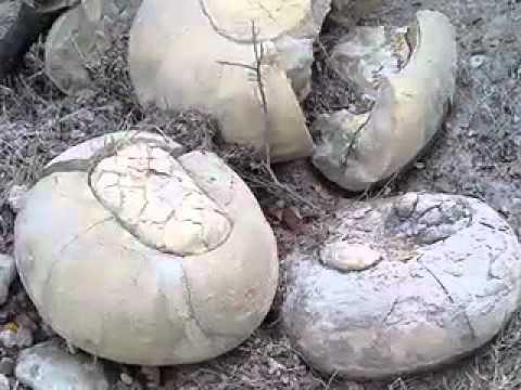 Strange Stones.mov