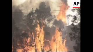Firefighters battle to save homes near Sydney as fires rage