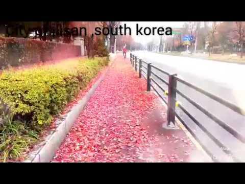 Illsan city , gyeonggi do south korea