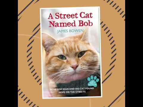 The movie that I want to watch-a street cat named Bob