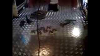 Алюминиевый пол(пол на луаз., 2013-10-12T15:03:15.000Z)