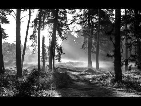 Ólafur Arnalds - A Stutter (feat  Arnor Dan)