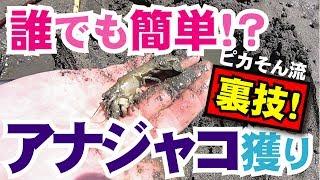 【Claming/Japan】 ☆『晴れの国から釣り行脚』さんの動画チャンネル登録...