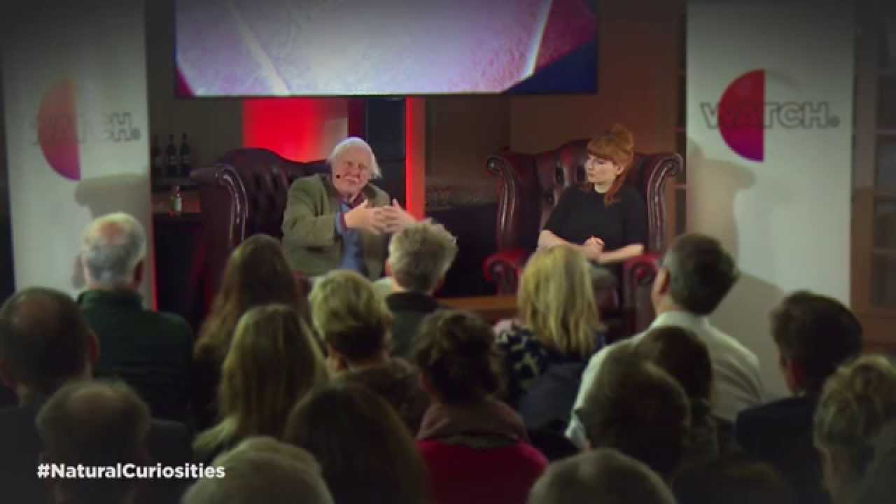 david attenborough talks with alice levine - part 3 | watch - youtube