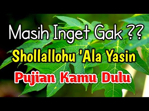 Nada Merdu Shollallohu Ala Yasin Pujian Sebelum Sholat Sholawat Lama Masih Ramai Di Masjid