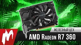 Бюджетный вариант — AMD Radeon R7 360 — Железный цех — Игромания