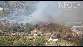 Incendio forestal en el paraje Cerro de los Cancharrales