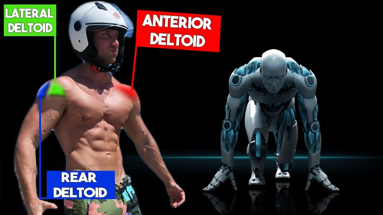Science Of 3d Deltoids The Best Science Backed Shoulder Workout