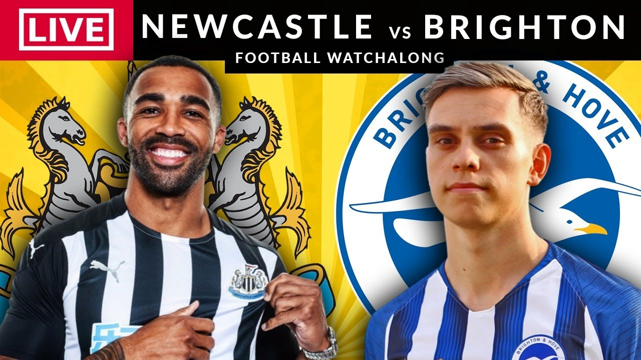 NEWCASTLE vs BRIGHTON - LIVE STREAMING - Premier League - Football Watchalong