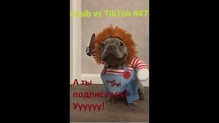 Прикольные видео сентябрь(19) 2019 Coub vs TikTok #47 (Best Coub)