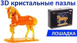 3D Кристльный пазл Лошадка. Обзор, особенности, сборка