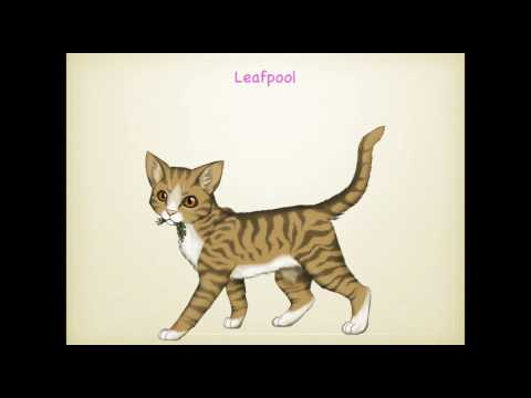Firestar's Family Tree (WARNING:...