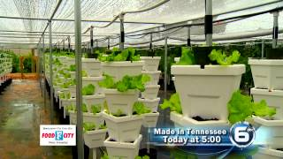 Made In Tennessee- Hydroponic Garden