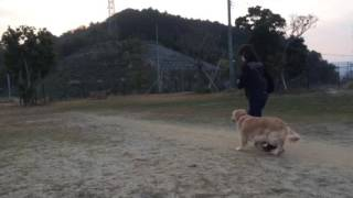 服従スペシャル  初練習 thumbnail