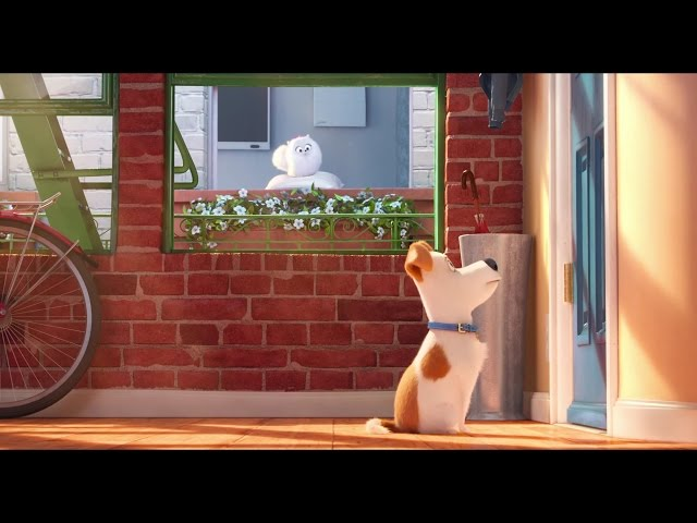 The Secret Life of Pets - Official Trailer #1